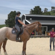 """How to stop the horse going """"behind the bit""""."""