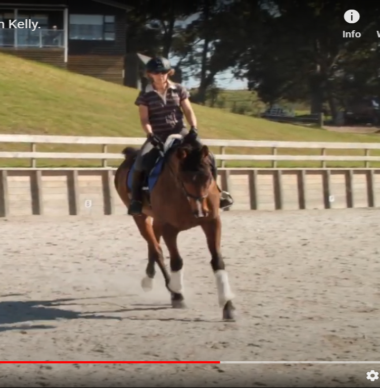 How to stop your horse from falling in.